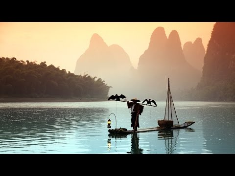 Fishing With Birds! Cormorant Fishing In Yangshuo, China