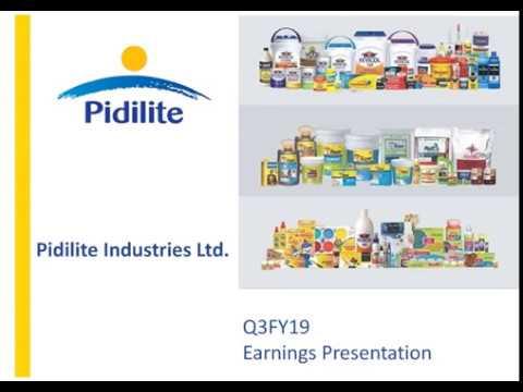 Pidilite Industries Ltd Investor Presentation For Dec 2018 Results Youtube