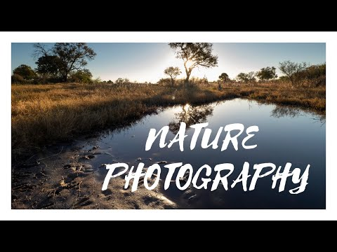 Nature Photography | 7-14mm F2.8 PRO