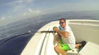 Man Catches Giant Scalloped Hammerhead on Boat!