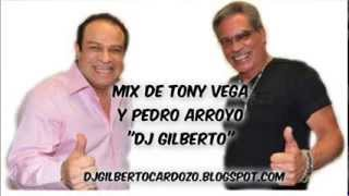 Mix De Tony Vega Y Pedro Arroyo  Dj Gilberto