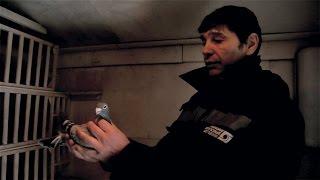 Спортивные голуби - разведение.(Александр Смаль рассказывает о своем методе разведения спортивных голубей. Инбридинг., 2017-01-04T14:23:34.000Z)