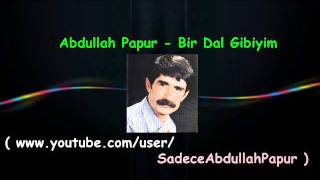 Abdullah Papur - Bir Dal Gibiyim