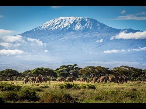 Full Audiobook: The Snows of Kilimanjaro - Ernest Hemingway - My Lector Series #1