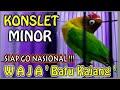 Lovebird Konslet Minor Istimewa Nasional  Mp3 - Mp4 Download