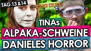 Dschungelcamp 2018 - Tag 13 & 14: Danieles HORROR-Prüfung! Tina twerkt! Alpakaschweine! IBES RTL