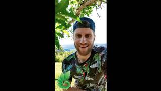 RETREAT TESTIMONIAL - Alex - New Life Ayahuasca