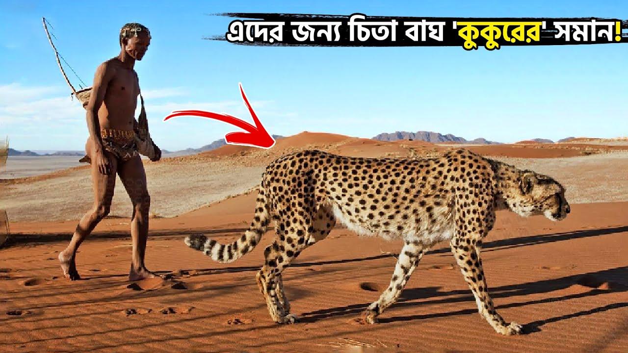 দেখুন এরা ভয়ংকর প্রাণীদের সাহায্যে কিভাবে শিকার করে! Hunting with Animals