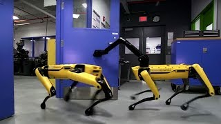 5 Extraordinary Robot With Clever Tasks