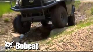 Bobcat of Rockford RTV