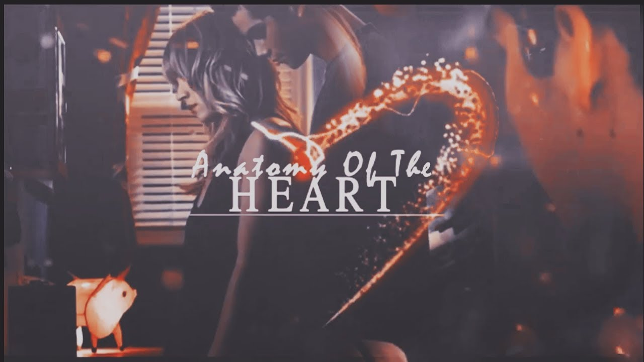 Anatomy Of The Heart Wattpad Trailer Youtube