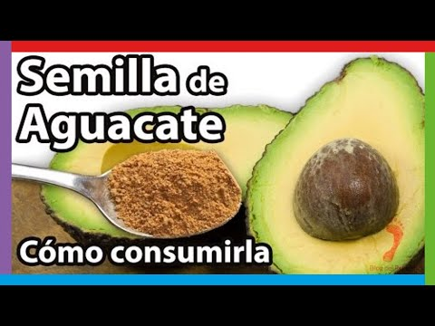 Avocado Seed Benefits & How to Eat Avocado Pit