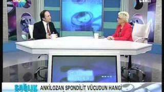 prof. dr. omer kuru,  gülgün feyman'la sağlık haber'de  'ankilozan spondilit' nedir, anlatıyor