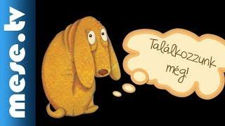 Both Gabi: A hintarabló - gyermekkönyv ajánló (x)