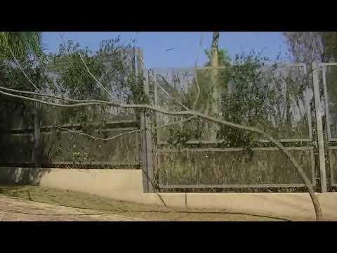 Travel Paraguay - San Bernardino to Altos 2