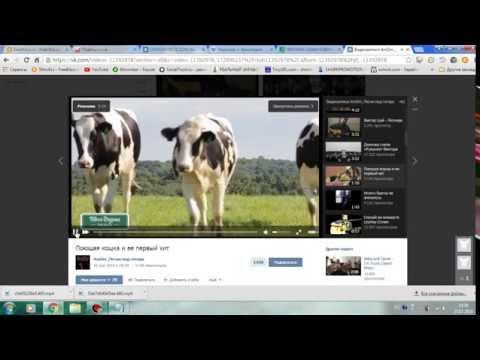Видео Как скачивать видео с ютюба