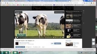Как скачивать видео с ВК на компьютер