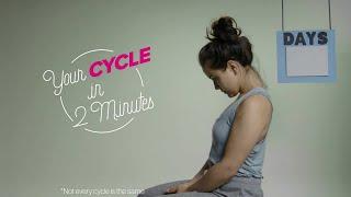 Что происходит с организмом во время менструального цикла