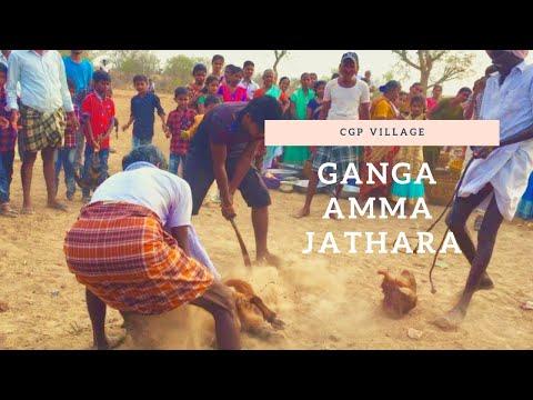 Ganga Amma Jathara CGP village Trailer Video// #cgpvillage #gnagammajathara #festival