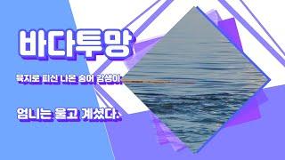 바다투망 끝판왕 숭어, 감생이 뭍으로 피접나오다. #바…