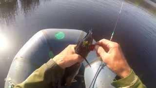 Ловля щуки на спиннинг летом на озере, видео rybachil.ru