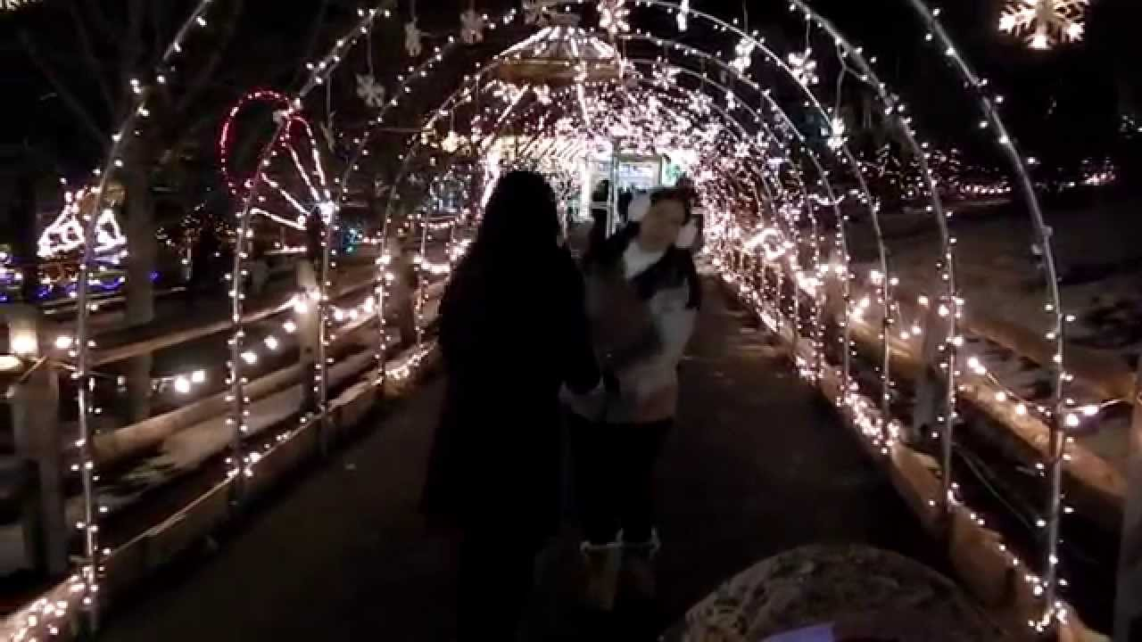 Turtle Back Zoo Christmas Light Spectacular - YouTube