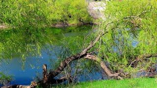 Северо-Крымский канал, весна, вода, природа, стройка