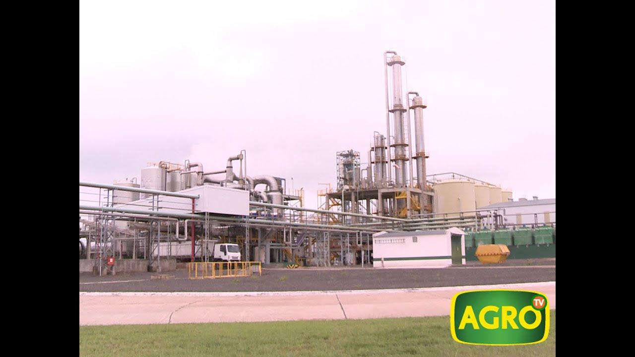 Resultado de imagen para Bio4 + etanol