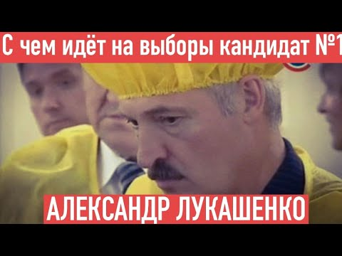 С чем идёт на выборы кандидат Александр Лукашенко