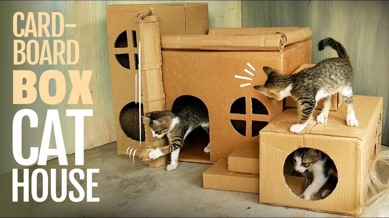 Cat House Diy Cardboard Box Ideas Youtube