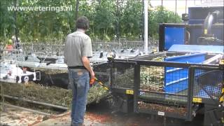 Mega Bio Chopper shredding interplanted tomato crop and leaves at Maroa Farms hydroponic greenhouse
