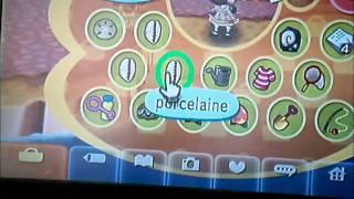 Wi-Fi Animal Crossing WII avec Joannie