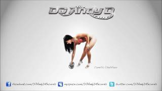 LMFAO - I'm Sexy And I Know It (DJ Andy D Remix)