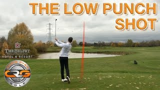 HOW TO HIT THE LOW PUNCH SHOT