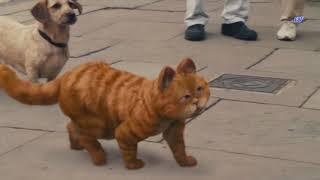 Garfield 2 - İngilizler Geliyor..!
