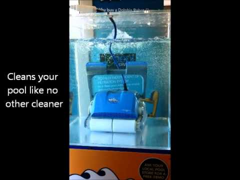 Dolphin Pool Cleaner in Southington