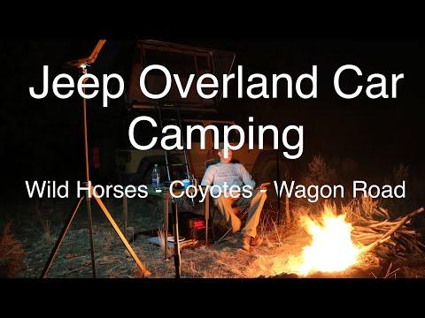 Jeep Overland Car Camping - Wild Horses - Coyotes - Historic Wagon Road