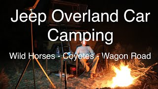 Jeep Overland Car Camping - Wild Horses - Coyotes - Historic Wagon Road