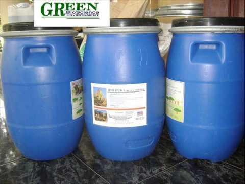 Để nuôi tôm công nghiệp đạt hiệu quả cao - Nguyên liệu thuốc thủy sản