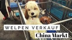 Nichts für schwache Nerven! Welpenverkauf China Markt