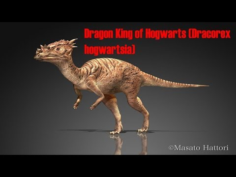 Dracorex Harry Potter dinosaur ?