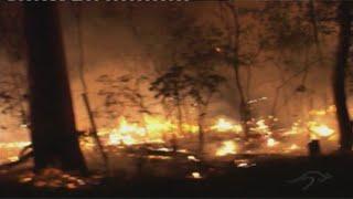 Bush Fires of Australia