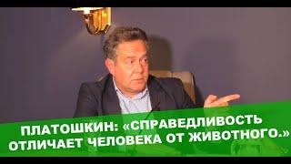 Платошкин эмоционально о гонениях евреев заявлении Зеленского в Освенциме и аресте Зубкова.