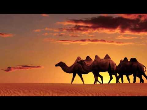 Music video Nikkfurie - Staring At The Desert