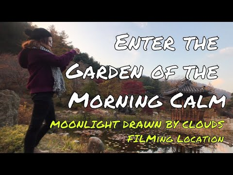 How to Go to the Garden of the Morning Calm | Korea Fall Day 5 Part 2