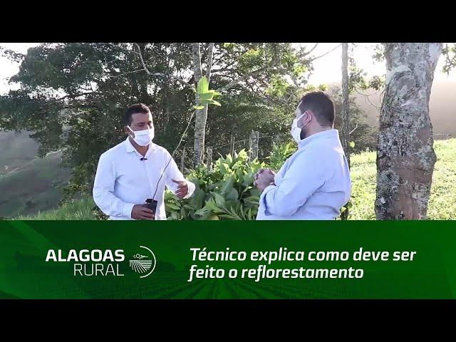 Técnico explica como deve ser feito o reflorestamento para recuperação de nascentes