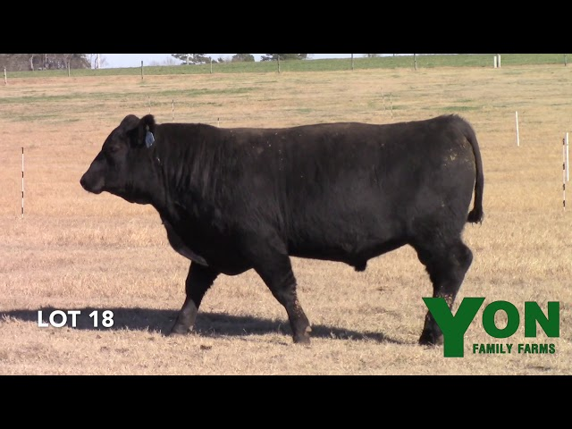 Yon Family Farms Lot 18