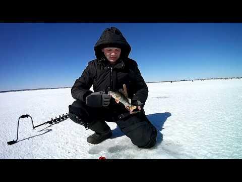 Зимняя рыбалка в кемеровской области