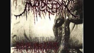 Anal Bleeding - Born in Menstrual Excrements