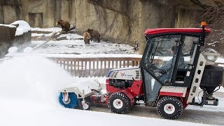 Tractors at the Zoo Thumbnail